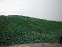 reciklaza-stakla